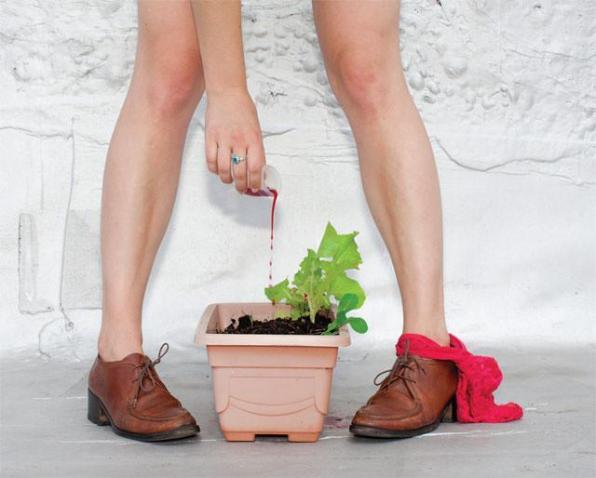 fertilizei-minha-salada-com-sangue-de-menstruacao-1413241820683
